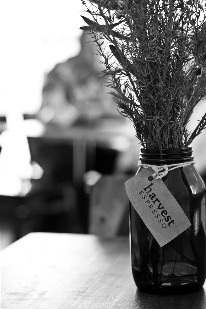 Harvest Espresso_Winter Menu_002 (Large)