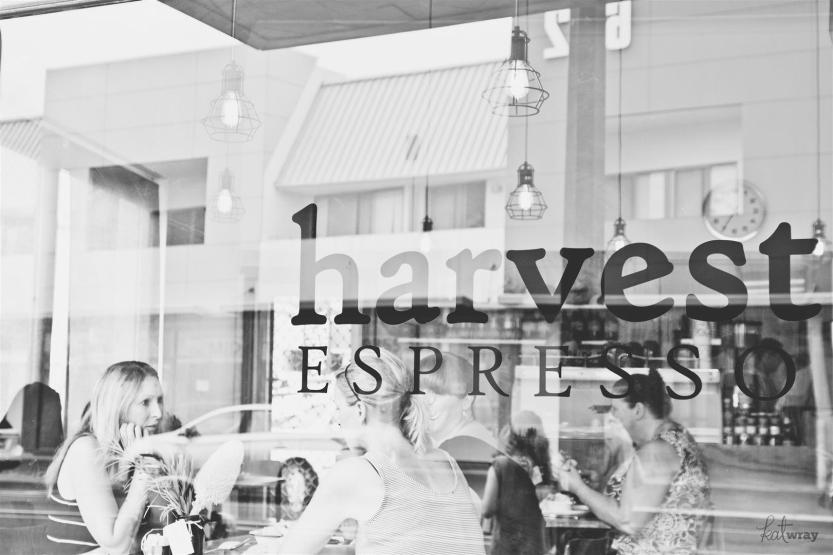 harvest espresso autumn 2014_style_057 (Large)