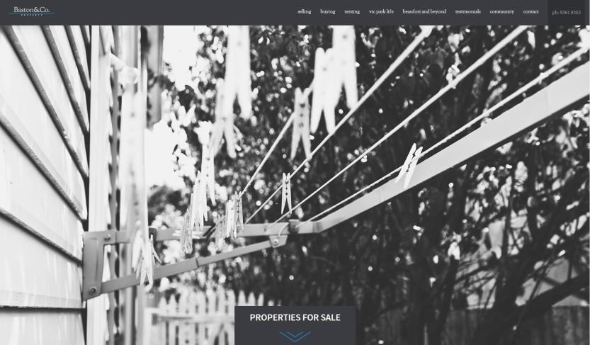 baston co website 1