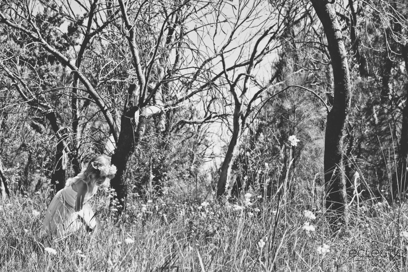 fairies_and_wildthings_BW_75